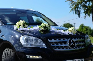 Mercedes-ML_15