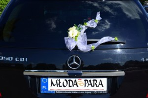 Mercedes-ML_16
