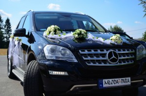 Mercedes-ML_25